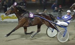 Ylva Brodda vinner V75-Bronsdivisionen